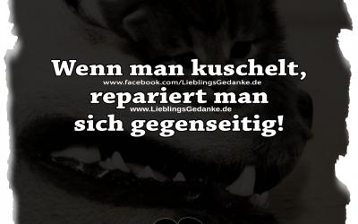 Wenn man kuschelt, repariert man sich gegenseitig!