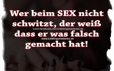 Wer beim SEX nicht schwitzt, der weiß dass er was falsch gemacht hat!